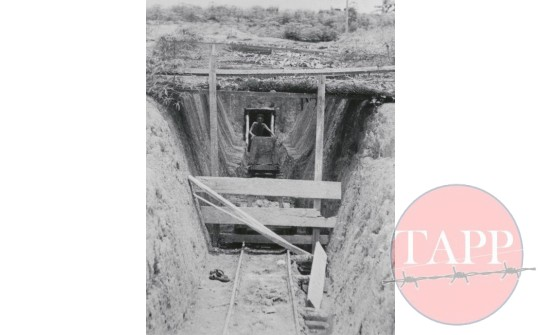 AWM  image of a tunnel entrance