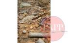 Ammunition found on the survface